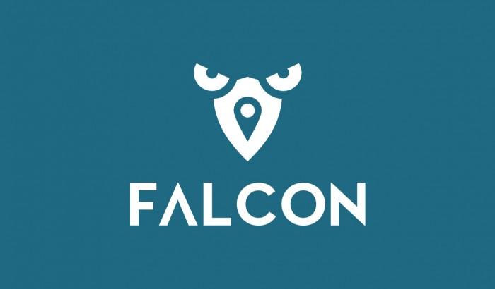 Falcon_Preview